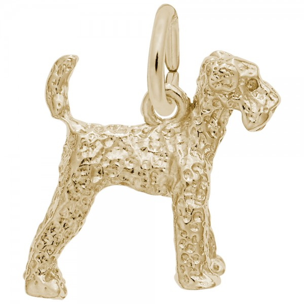 https://www.hudsonpoole.com/upload/product/0146-Gold-Airedale-RC.jpg