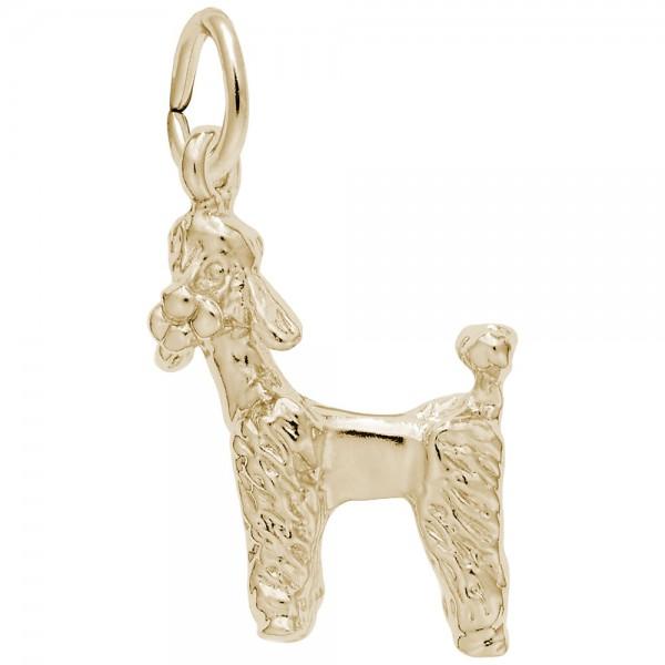 https://www.hudsonpoole.com/upload/product/0289-Gold-Poodle-RC.jpg
