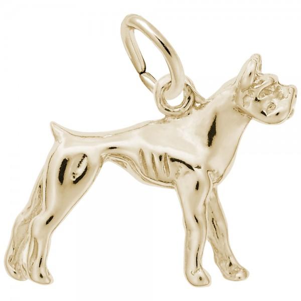 https://www.hudsonpoole.com/upload/product/0300-Gold-Boxer-RC.jpg