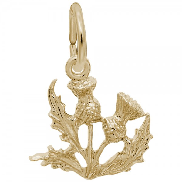 https://www.hudsonpoole.com/upload/product/0374-Gold-Thistle-RC.jpg