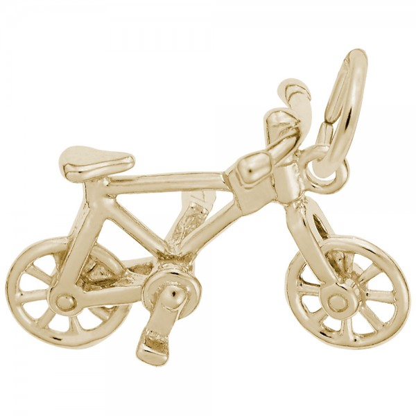 https://www.hudsonpoole.com/upload/product/0476-Gold-Bicycle-RC.jpg